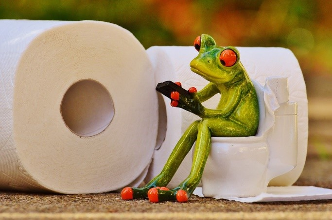 Kikker op toilet
