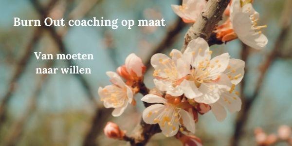 Burn Out coaching op maat